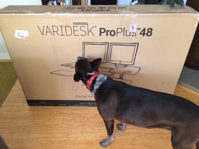 Standing desk inspection